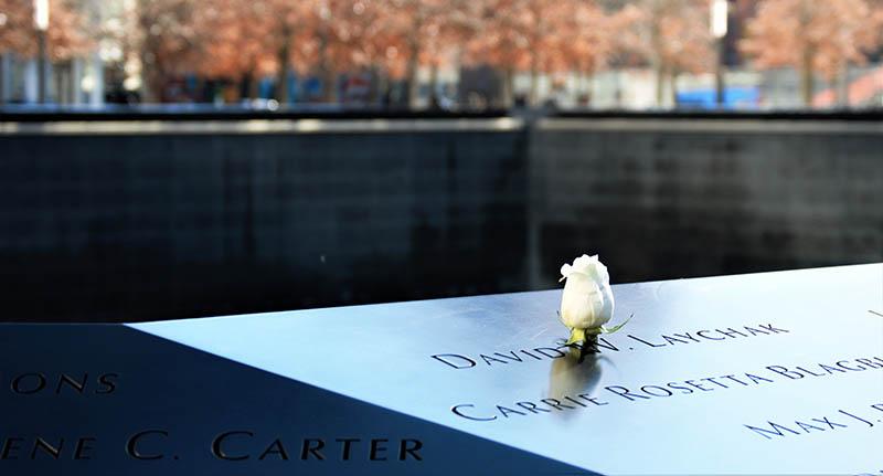 White rose at the NYC 9/11 Memorial. Credit: Iago Godoy, Unsplash